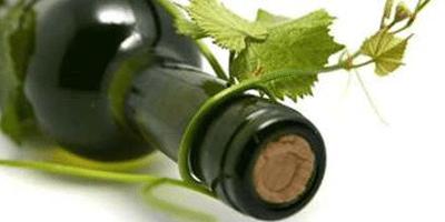 Vigne et bouteille