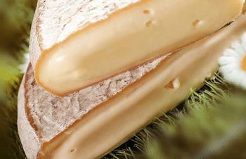 Saint-Nectaire à pâte pressée non cuite