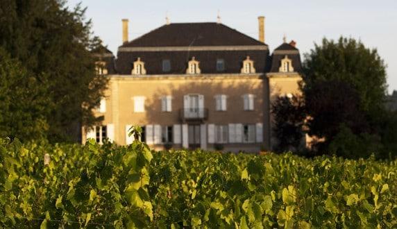 Château de Moulin-à-vent et son vignoble