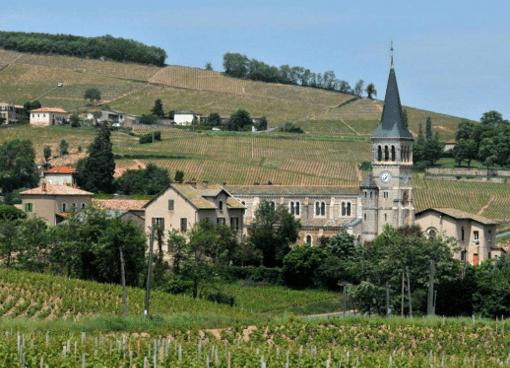 Vignoble et village de Chénas