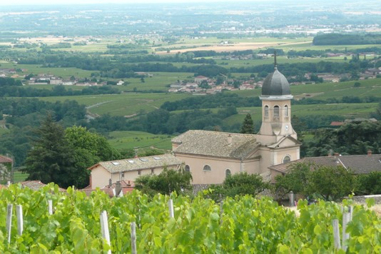 Vignoble et village de Chiroubles