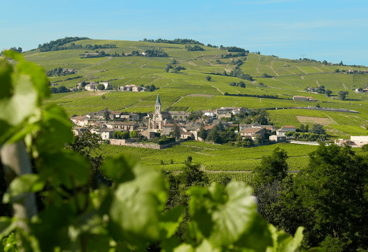 Village et vignoble de Juliénas