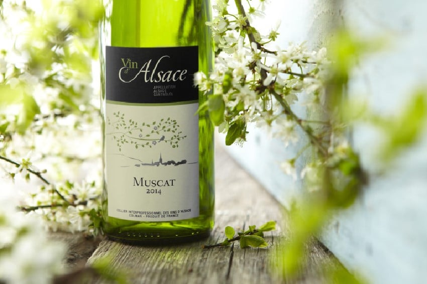 Muscat d'Alsace