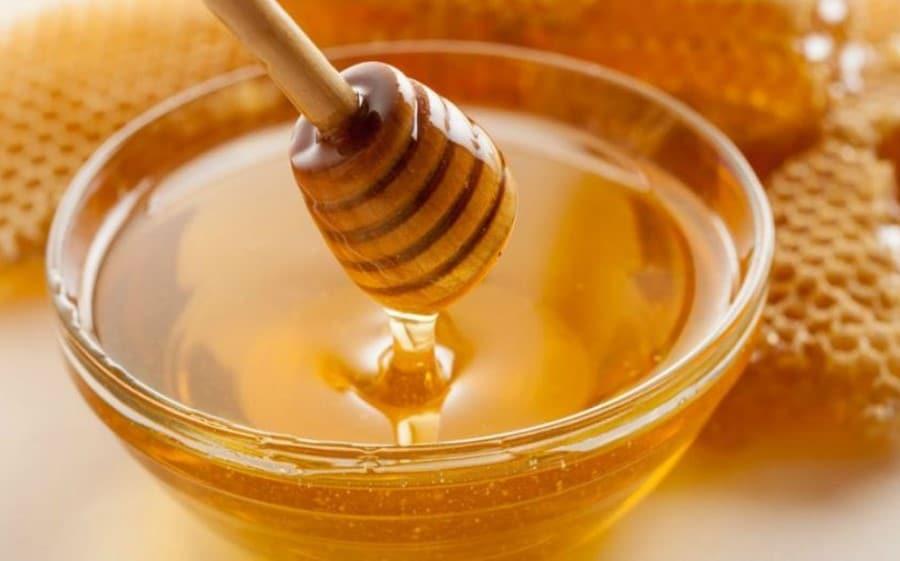 Miel et alvéoles de ruche