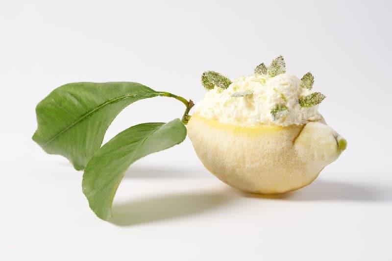 Citron de Menton givré