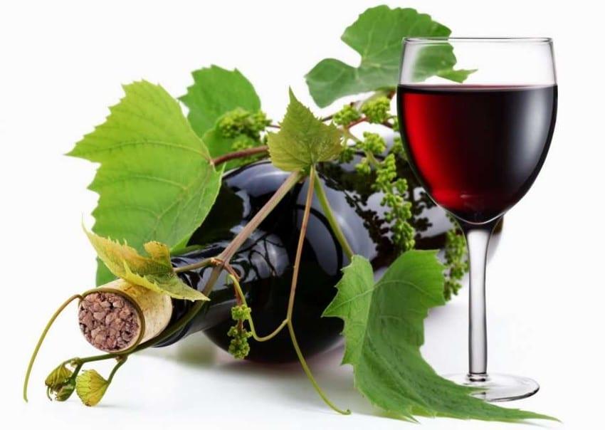 Vin rouge et sarment