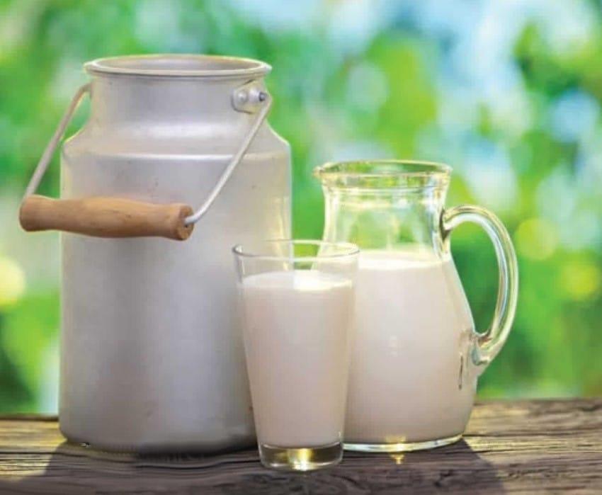 Lait et bidon à lait