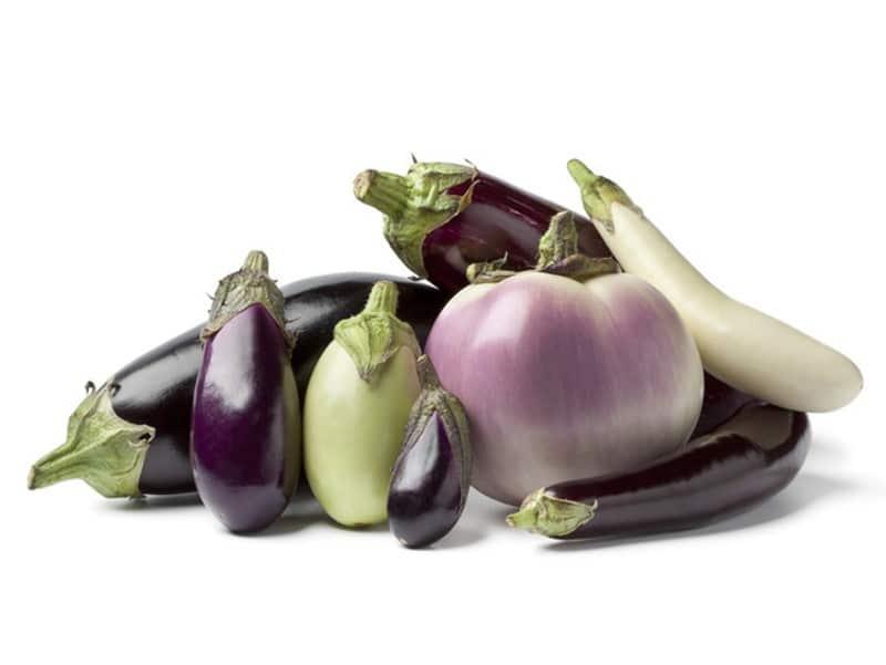 Différentes variétés d'aubergines