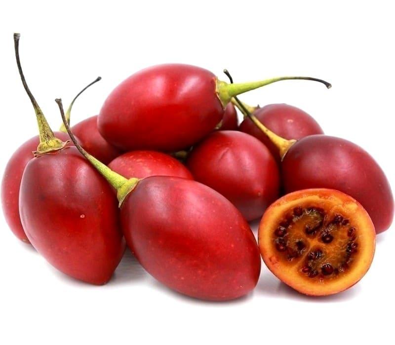 Tomate en arbre Cyphomandra betacea