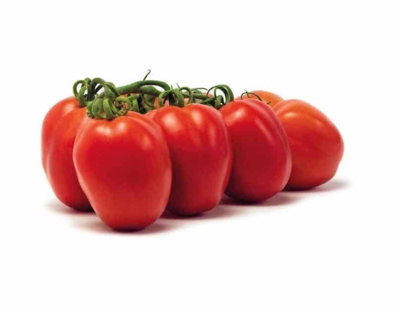 Tomate romanella