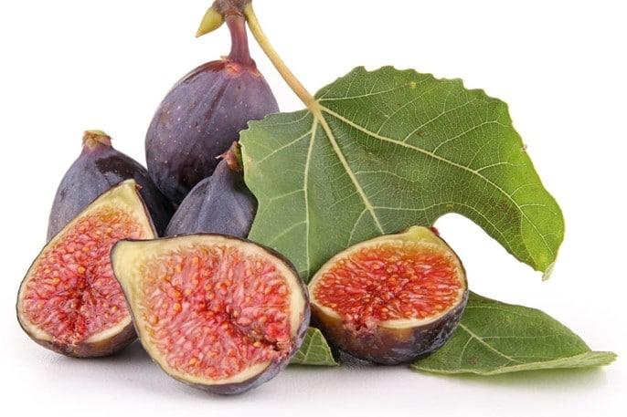 Figues, Ficus carica